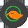 gsi-green-it-optimization